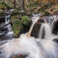 Buy canvas prints of  Wyming Brook by James Grant