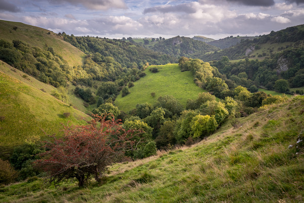 Ecton Hill to Thor's Cave - Canvas print by James Grant