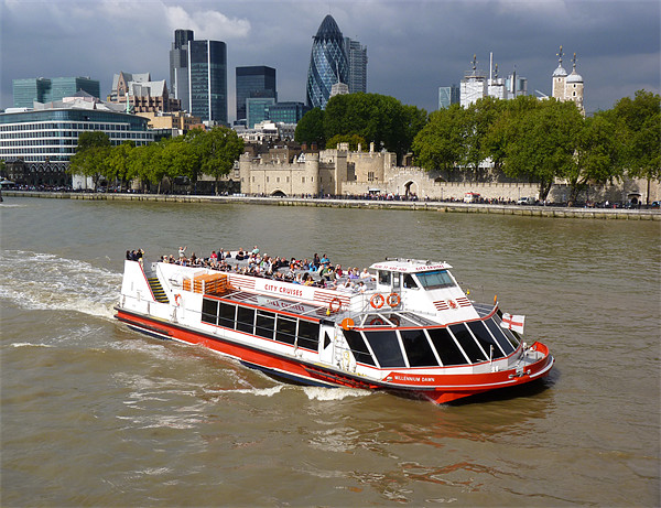 Thames Trippers Canvas Print by Phil English