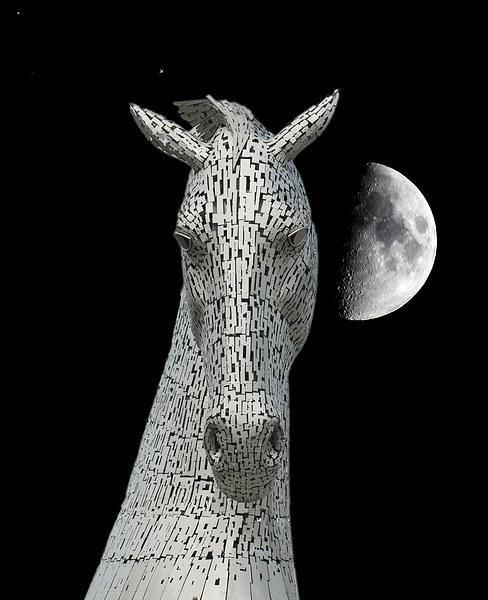 Lunar Kelpie Canvas print by Stuart Jack