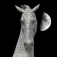 Buy canvas prints of  Lunar Kelpie by Stuart Jack