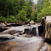Buy canvas prints of Forest River by Stuart Jack