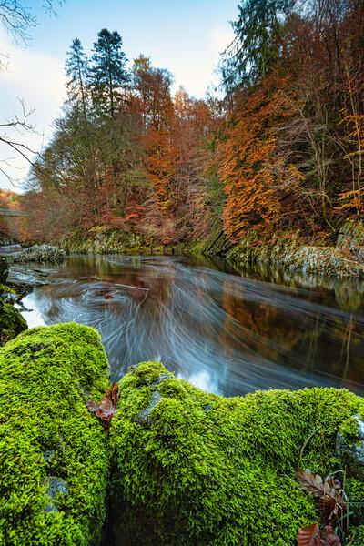 Autumn Flows Canvas Print by Stuart Jack