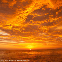 Buy canvas prints of Pacific Sunset by Craig Lapsley