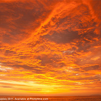 Buy canvas prints of Sunset over the Pacific Ocean by Craig Lapsley