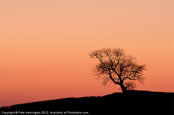 Lone tree on a hill top Canvas print by Pete Hemington