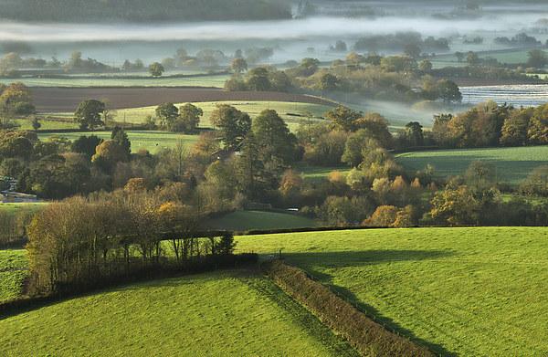 Misty morning Acrylic by Pete Hemington