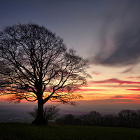 Buy canvas prints of Hill Top Tree and Sunset by Pete Hemington