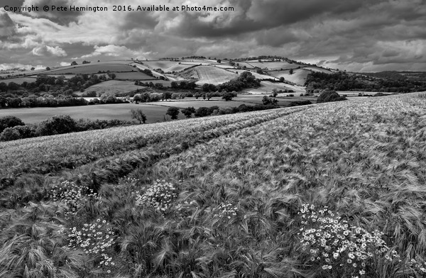 The Exe Valley Canvas print by Pete Hemington