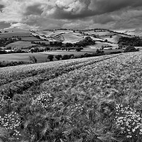 Buy canvas prints of The Exe Valley by Pete Hemington