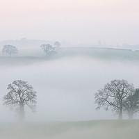 Buy canvas prints of Misty Devon Morning by Pete Hemington