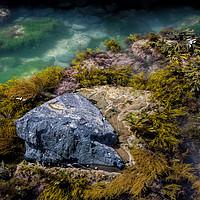 Buy canvas prints of Rock pool by Pete Hemington