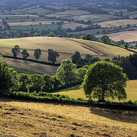 Buy canvas prints of View from Raddon Hill by Pete Hemington