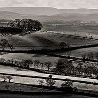 Buy canvas prints of Light on rolling hills in Mid Devon by Pete Hemington