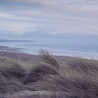 Buy canvas prints of  Misty Morn II by lucy devereux