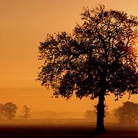 Buy canvas prints of A Rural Norfolk Sunrise by Darren Burroughs