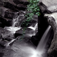 Buy canvas prints of Ivy water fall by Doug McRae