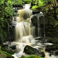 Buy canvas prints of Steeton Falls by Sandi Cockayne - Dalescapes.