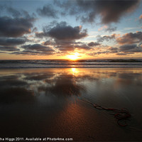 Buy canvas prints of Sunset and Seaweed by Samantha Higgs