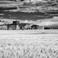 Buy canvas prints of NA Rural house in Tuscany by luciano luddi