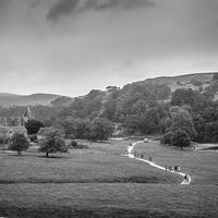 Buy canvas prints of  Bolton Abbey Estate mono by Sean Wareing