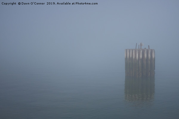 Whitstable Fog in Febuary Canvas print by Dawn O'Connor