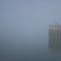 Buy canvas prints of Whitstable Fog in Febuary by Dawn O'Connor