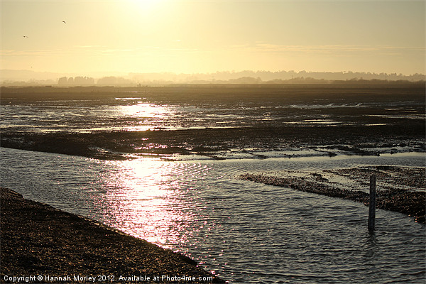 Rye Harbour Nature Reserve Canvas print by Hannah Morley