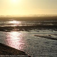 Buy canvas prints of Rye Harbour Nature Reserve by Hannah Morley