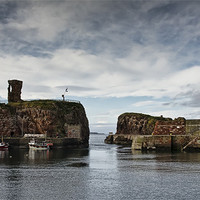 Buy canvas prints of Dunbar Harbour by Sam Smith
