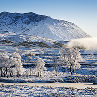 Buy canvas prints of Frozen highlands by Sam Smith
