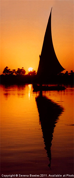 Sunset Felucca on the Nile Framed Print by Serena Bowles