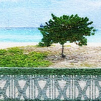Buy canvas prints of Barbados   by OWN ~ it ARTWORK