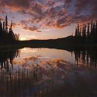 Buy canvas prints of Yukon nights  by Thomas Schaeffer