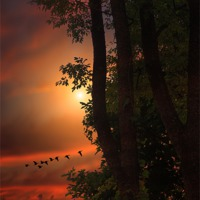 Buy canvas prints of LATE AUGUST SUNSET by Tom York
