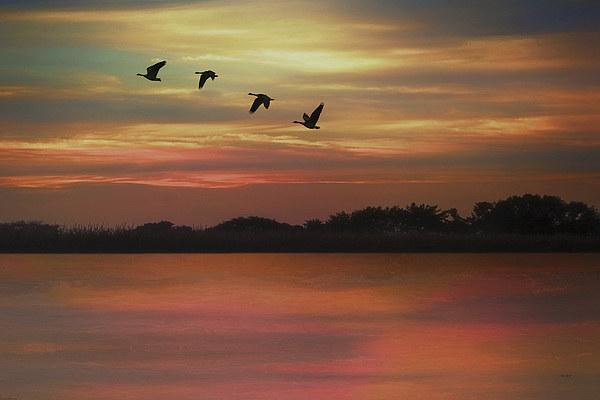 SEPTEMBER SKY Canvas print by Tom York