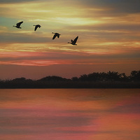 Buy canvas prints of SEPTEMBER SKY by Tom York
