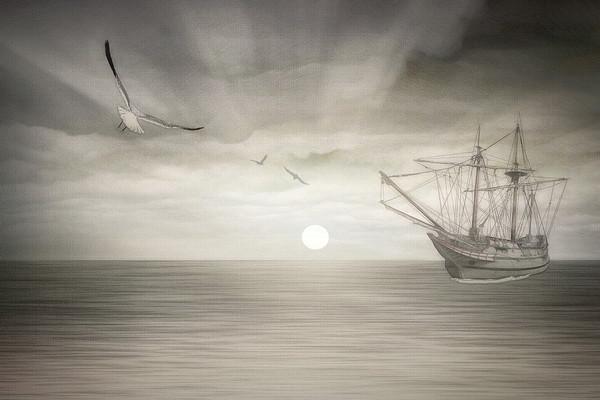 Ocean Fantasy Canvas Print by Tom York