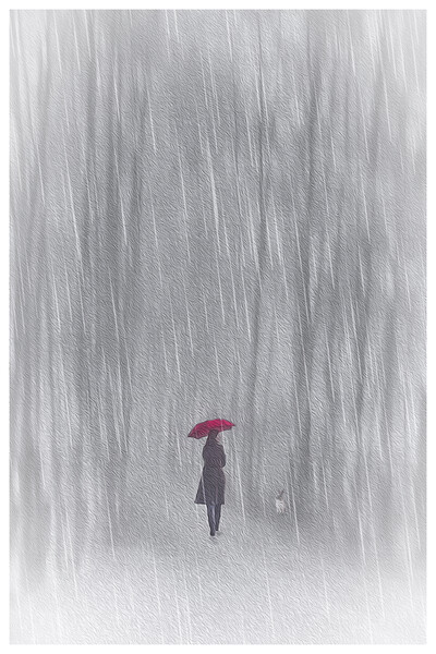 Woman With Red Umbrella Framed Print by Tom York