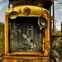 Buy canvas prints of Junkyard Monster by Steven Shea