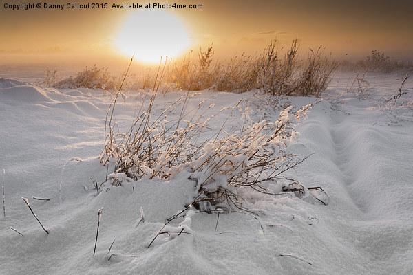 Winter Sunset Canvas Print by Danny Callcut