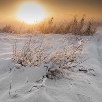 Buy canvas prints of Winter Sunset by Danny Callcut