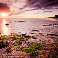 Buy canvas prints of Bamburgh castle and Sunrise by Paul Appleby