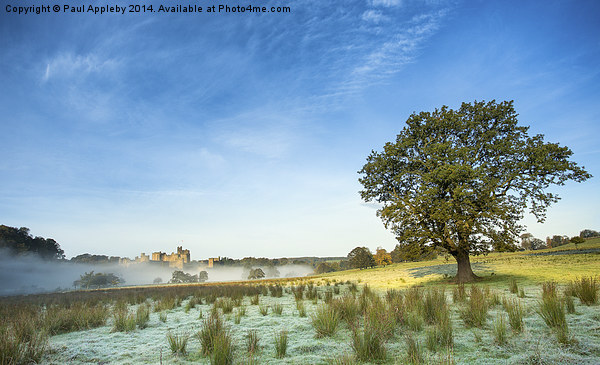 Alnwick Castle - frost and mist Canvas print by Paul Appleby