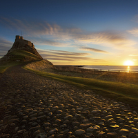 Buy canvas prints of  In the Warm morning light - Lindisfarne Castle, N by Paul Appleby