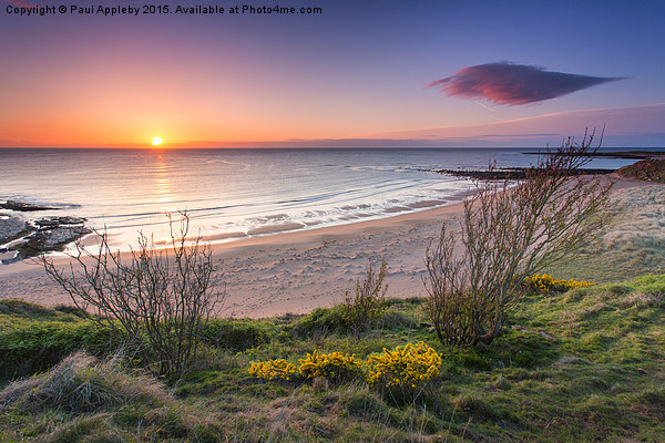 Sugar Sands Northumberland Canvas print by Paul Appleby