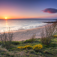 Buy canvas prints of  Sugar Sands Northumberland by Paul Appleby