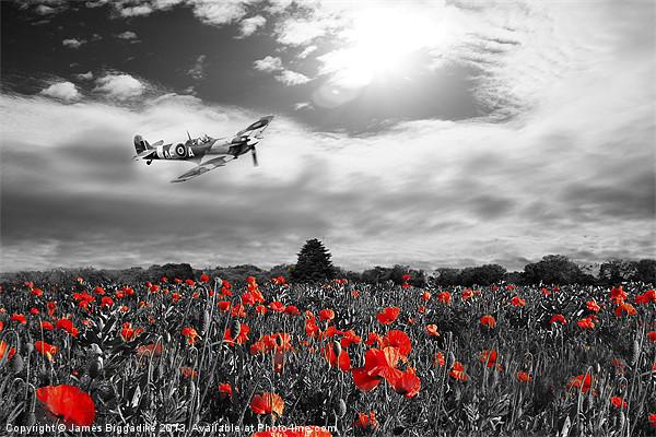 Spitfire Poppy Pass Canvas print by J Biggadike