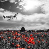 Buy canvas prints of Spitfire Poppy Pass by J Biggadike