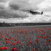 Buy canvas prints of Spitfire Red  by J Biggadike
